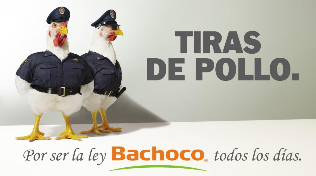 WEB-2400-Tiras-de-Pollo