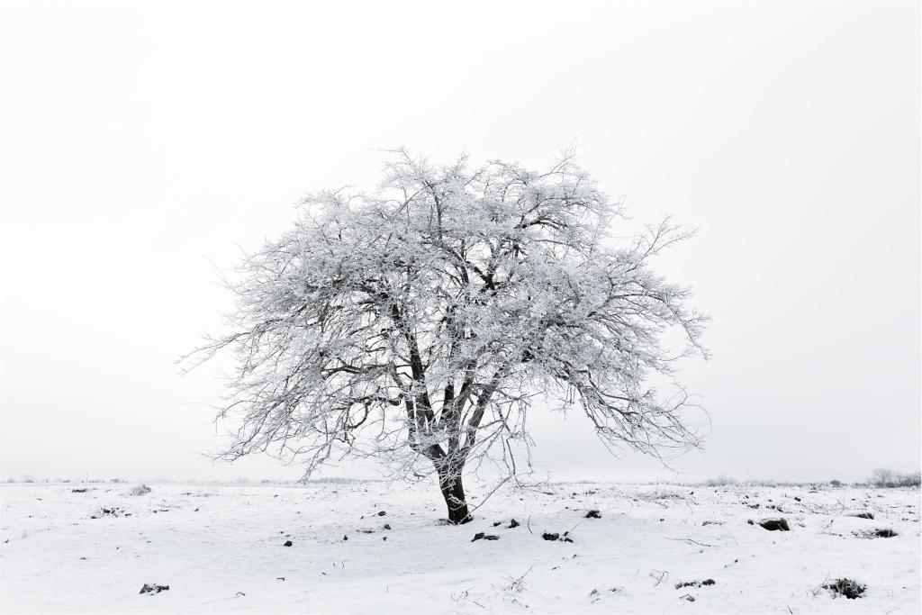 8 powodów do rozpoczęcia nauki języka obcego w zimie
